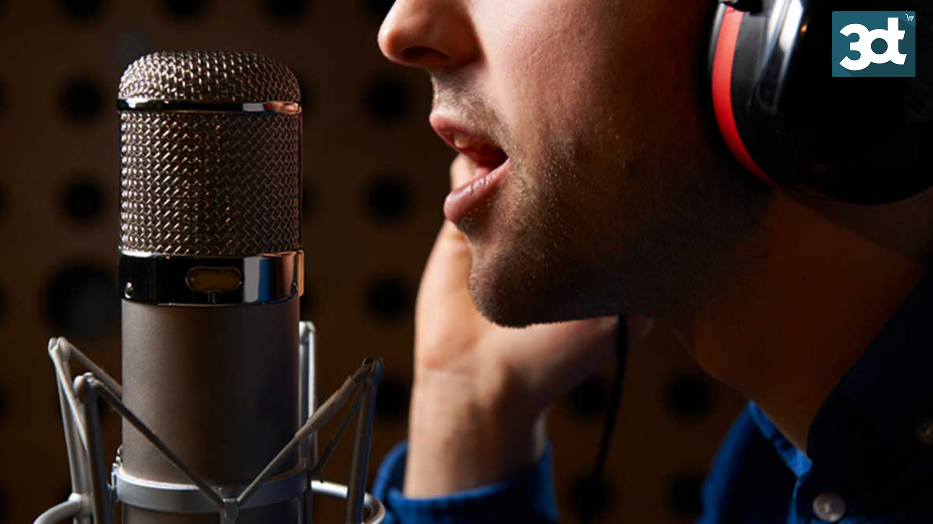 Tilbud på professionel voice-over online